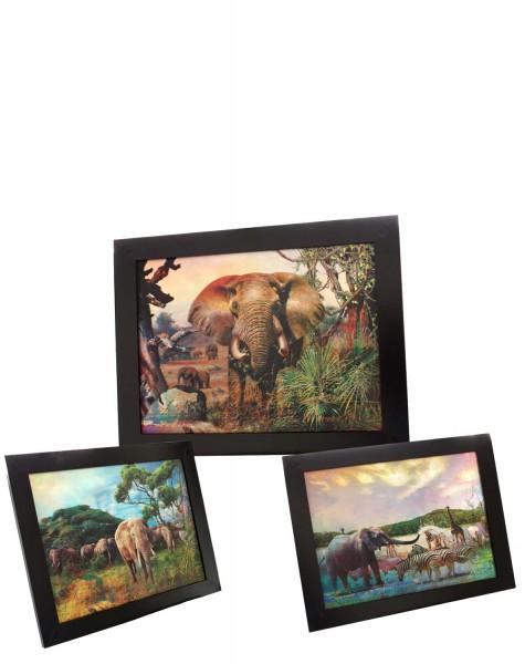 """Assortment: 10 pcs 3D Picture """"Jungle"""" Elephant Decoration Photo"""